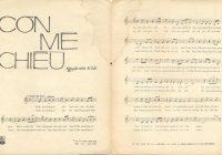 Những ca khúc về Mậu Thân 68: Tính nhân bản của người miền Nam